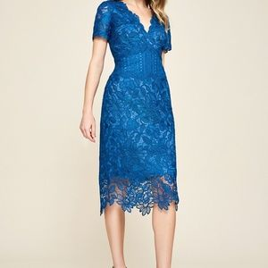 Tadashi Shoji Carter Floral Lace Dress Blue